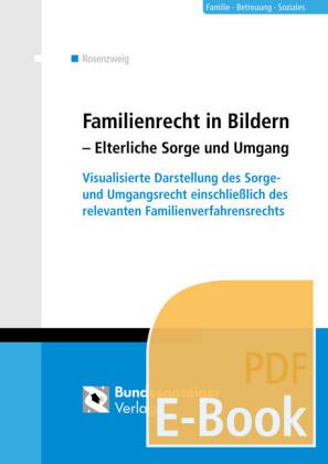 Familienrecht in Bildern - Elterliche Sorge und Umgang (E-Book)