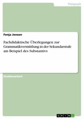 Fachdidaktische Überlegungen zur Grammatikvermittlung in der Sekundarstufe am Beispiel des Substantivs