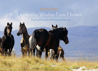 Leadership Wisdom from Horses