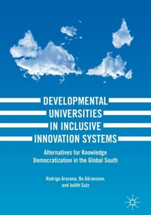 Developmental Universities in Inclusive Innovation Systems