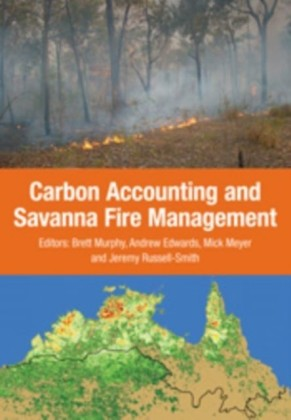 Carbon Accounting and Savanna Fire Management