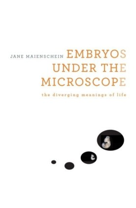 Embryos under the Microscope