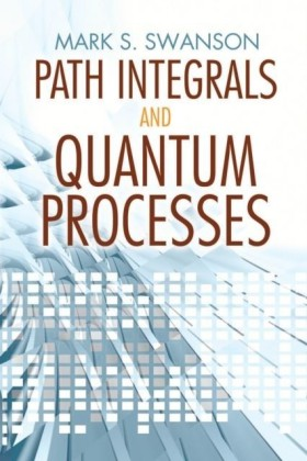 Path Integrals and Quantum Processes