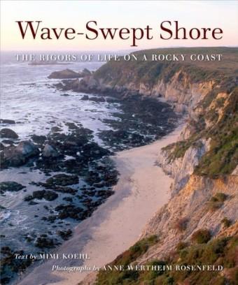 Wave-Swept Shore