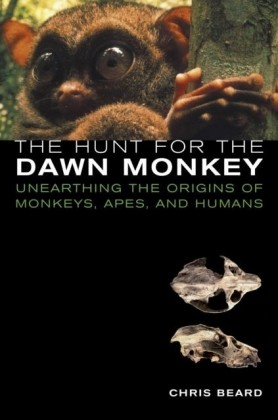 Hunt for the Dawn Monkey