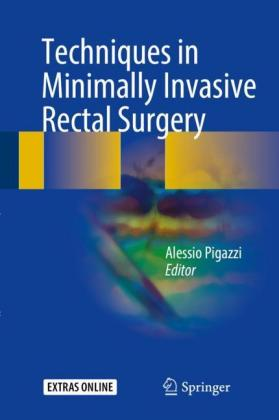 Techniques in Minimally Invasive Rectal Surgery