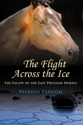 Flight Across The Ice