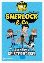 Die Schule der Detektive - Sherlock & Co lösen das Geisterrätsel Cover