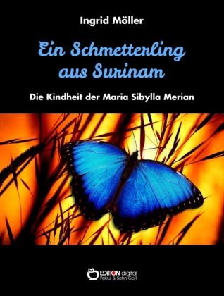 Ein Schmetterling aus Surinam