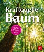 Kraftquelle Baum Cover