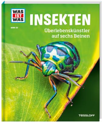 Insekten. Überlebenskünstler auf sechs Beinen