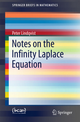 Notes on the Infinity Laplace Equation