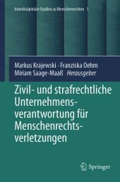Zivil- und strafrechtliche Unternehmensverantwortung für Menschenrechtsverletzungen