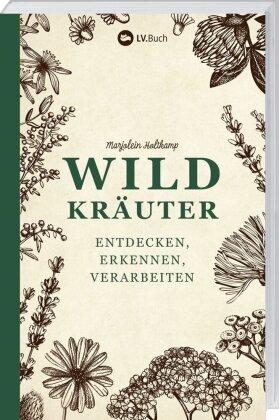 Wildkräuter entdecken, erkennen und verarbeiten