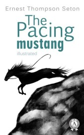 The Pacing mustang