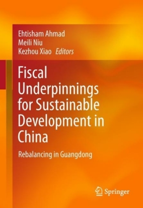 Fiscal Underpinnings for Sustainable Development in China
