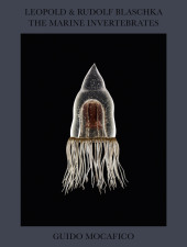 Leopold & Rudolf Blaschka. The Marine Invertebrates