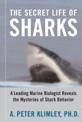 Secret Life of Sharks