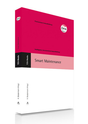 Smart Maintenance (E-Book, PDF)