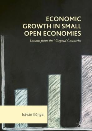 Economic Growth in Small Open Economies