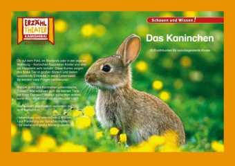 Kamishibai: Das Kaninchen