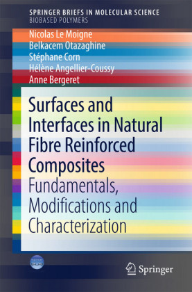 Surfaces and Interfaces in Natural Fibre Reinforced Composites