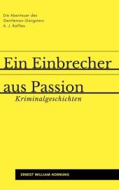 Ein Einbrecher aus Passion