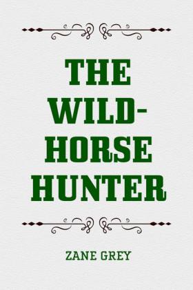The Wild-Horse Hunter
