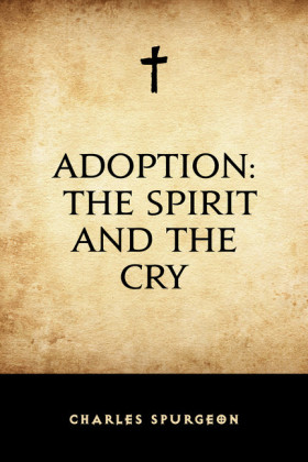 Adoption: The Spirit and the Cry