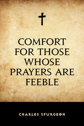 Comfort for Those Whose Prayers are Feeble