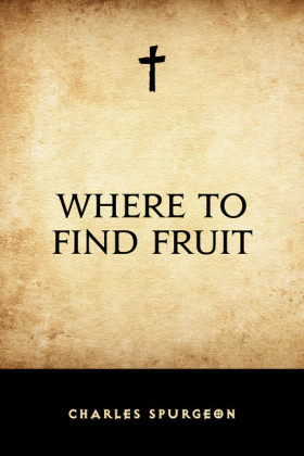 Where to Find Fruit