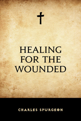 Healing for the Wounded