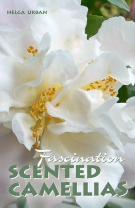 Fascination Scented Camellias