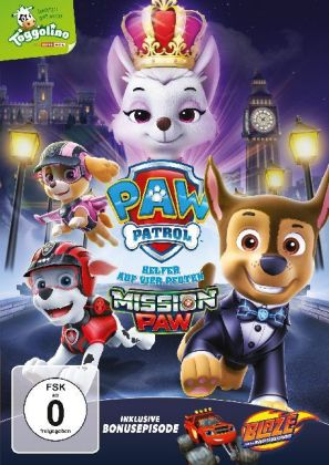 Paw Patrol: Mission Paw, 1 DVD