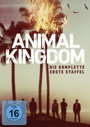 Animal Kingdom, 3 DVDs
