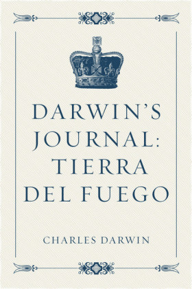 Darwin's Journal: Tierra del Fuego