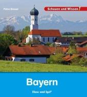 Bayern Cover
