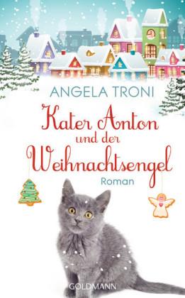 Kater Anton und der Weihnachtsengel