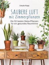 Saubere Luft mit Zimmerpflanzen Cover