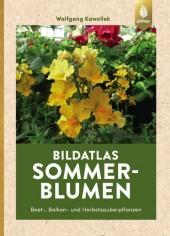 Bildatlas Sommerblumen