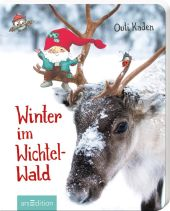 Winter im Wichtelwald Cover