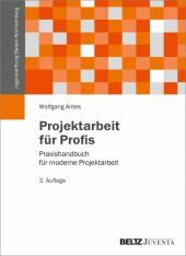 Projektarbeit für Profis