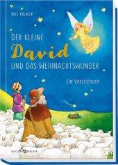 Der kleine David und das Weihnachtswunder