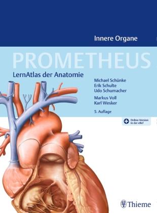 PROMETHEUS Allgemeine Anatomie und Bewegungssystem - Shop ...