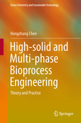 High-solid and Multi-phase Bioprocess Engineering