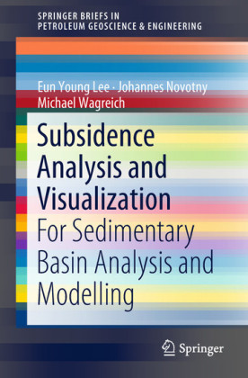 Subsidence Analysis and Visualization