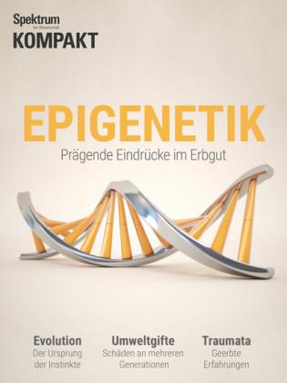 Spektrum Kompakt - Epigenetik 2