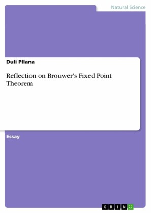 Reflection on Brouwer's Fixed Point Theorem