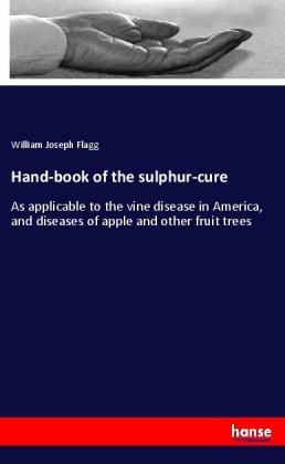 Hand-book of the sulphur-cure