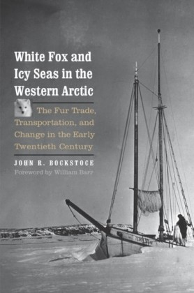 White Fox and Icy Seas in the Western Arctic